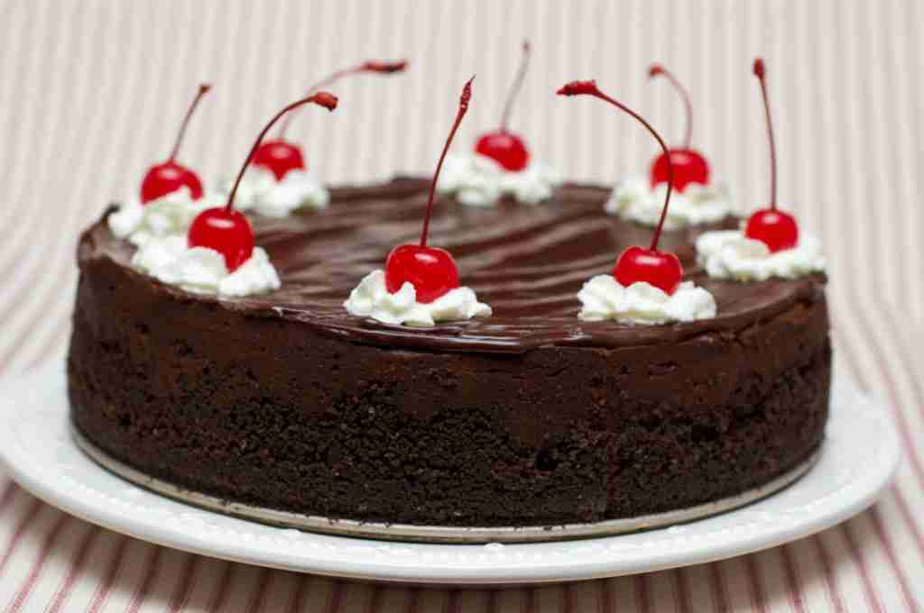 Chocolate Slice with Cherry Topping