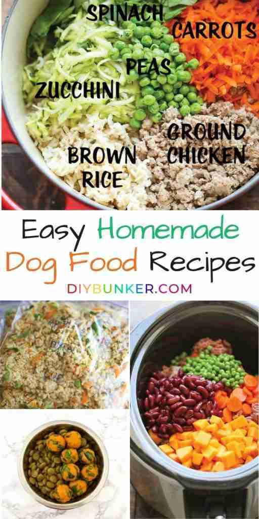 DIY Dog Food Recipe Ideas You Can Feel Good About