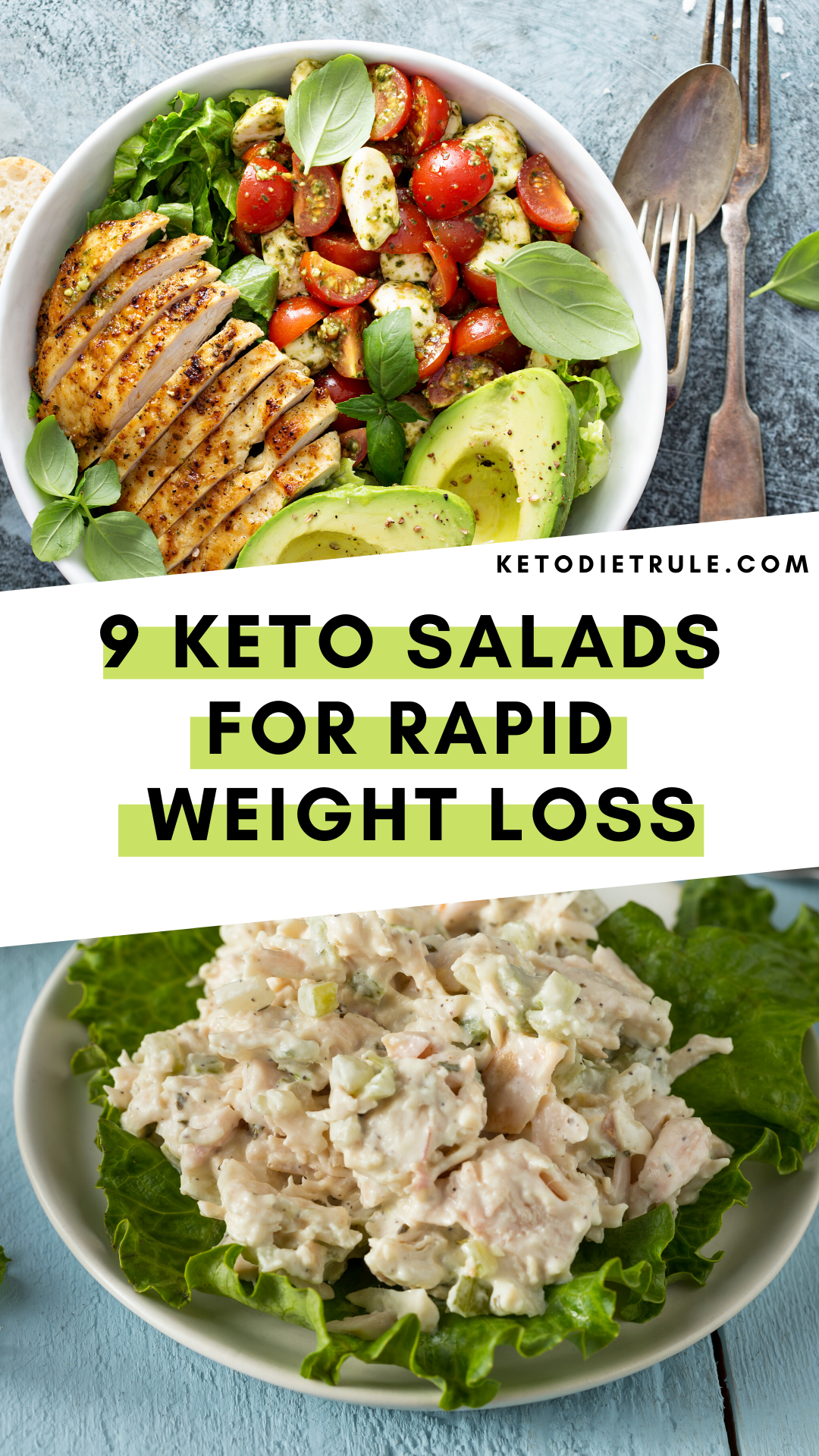 9 Best Keto Diet Salad Recipes for Rapid Weight Loss