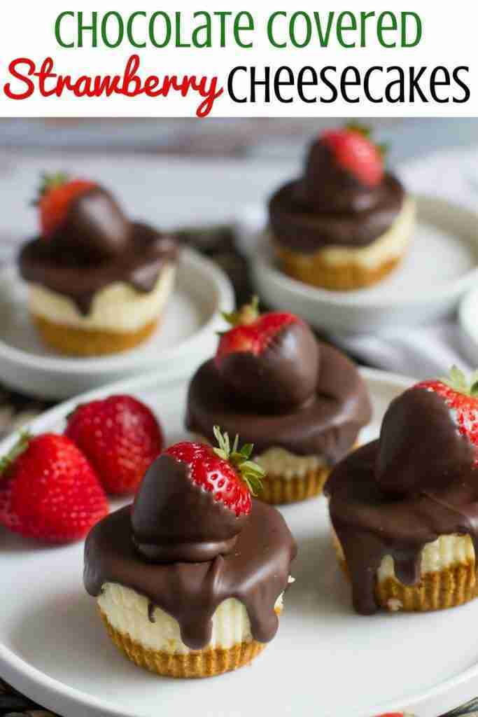Chocolate Covered Strawberry Mini Cheesecakes