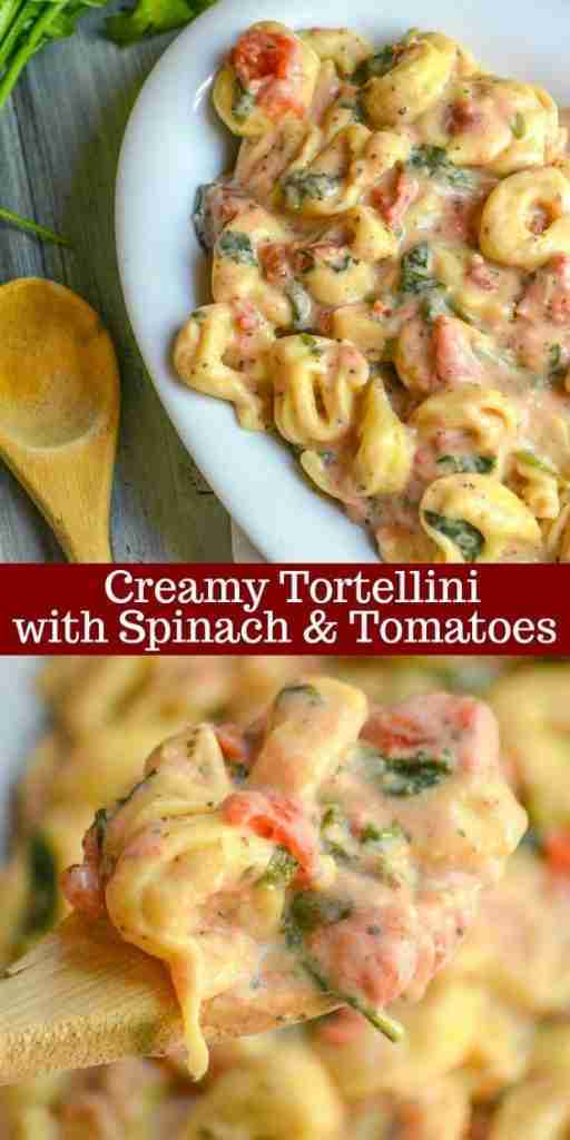 Creamy Tortellini with Spinach & Tomatoes – 4 Sons 'R' Us