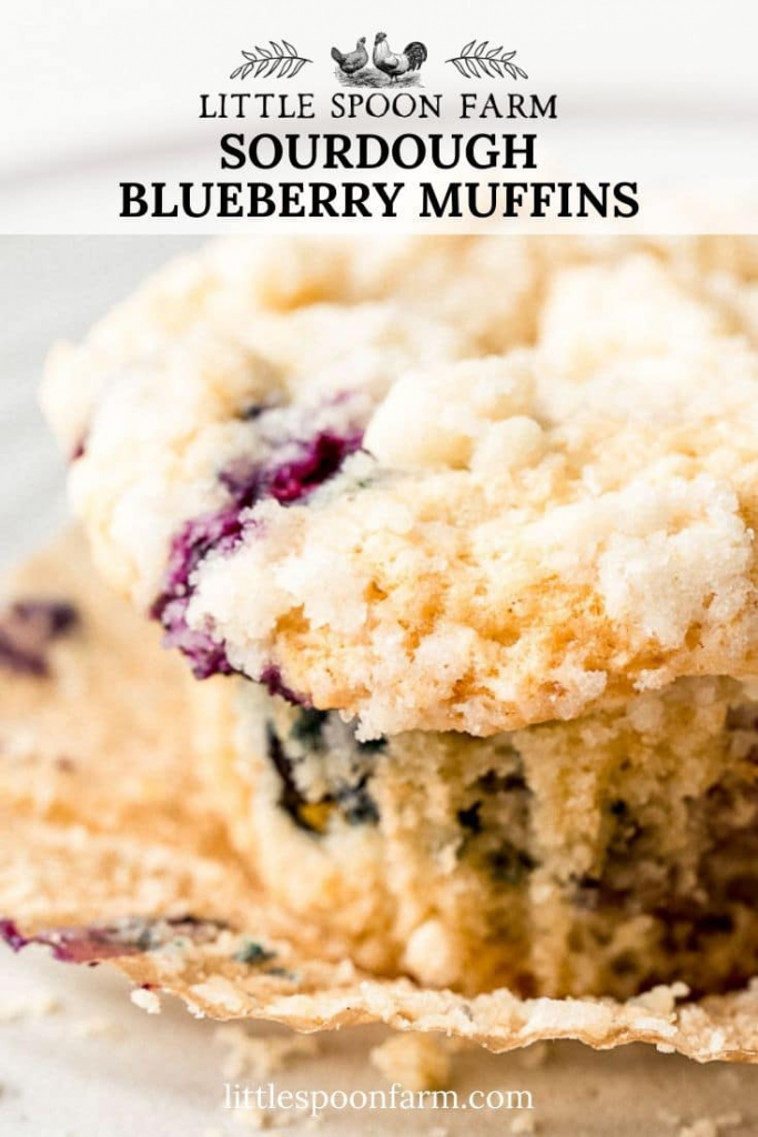 Sourdough Blueberry Muffins with Crumb Topping