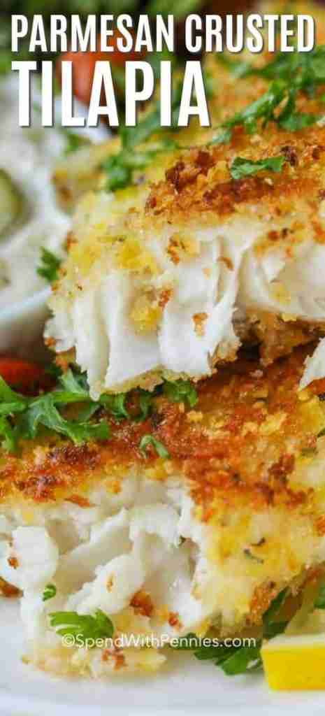 Parmesan Crusted Tilapia – Spend With Pennies