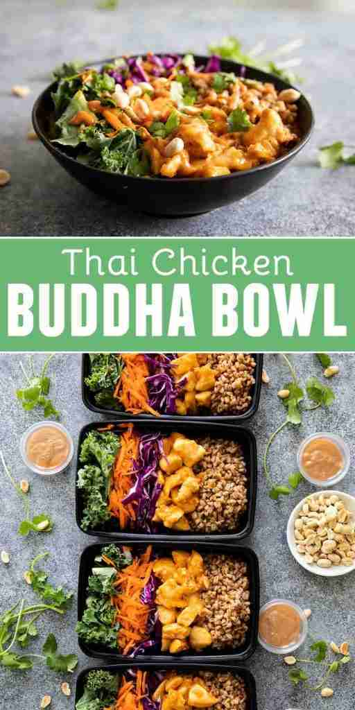Thai Chicken Buddha Bowl Recipe – Taste and Tell