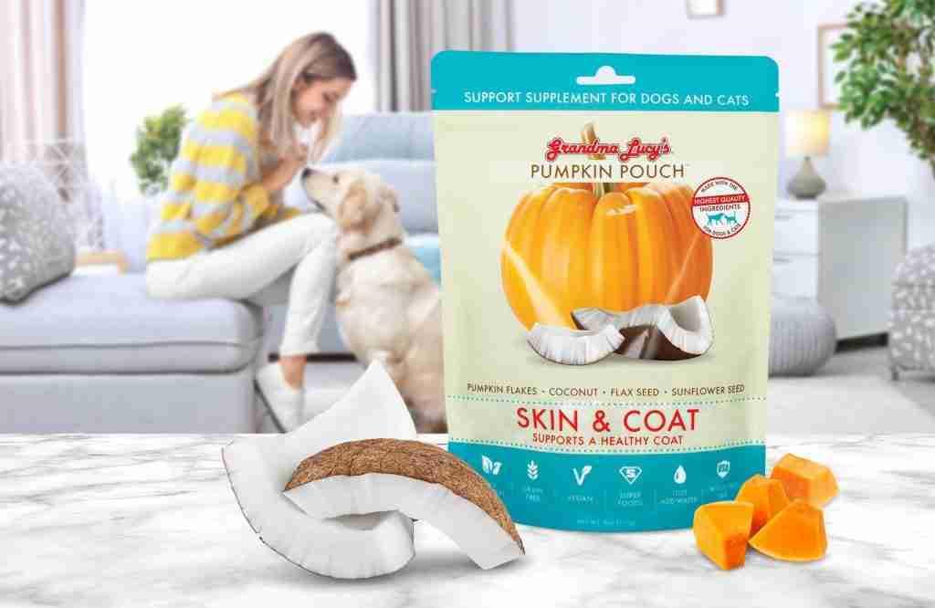 Pumpkin Pouch Skin & Coat V7