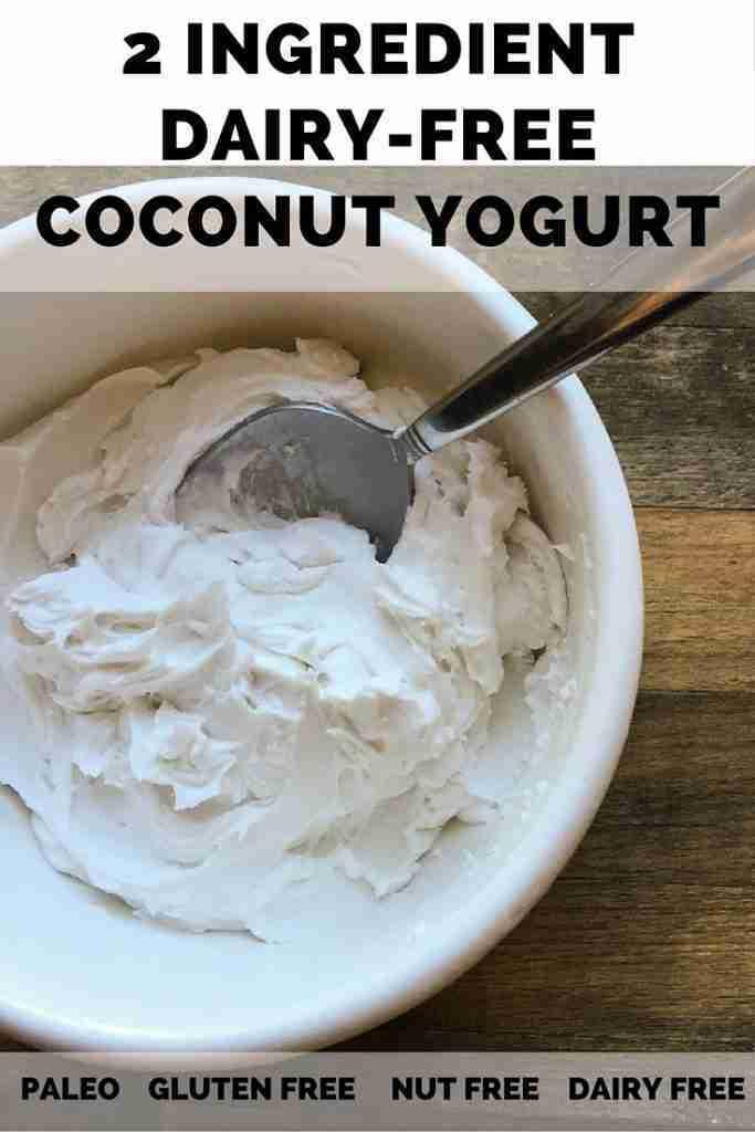 2 Ingredient Dairy-Free Coconut Yogurt – Sparkle Kitchen