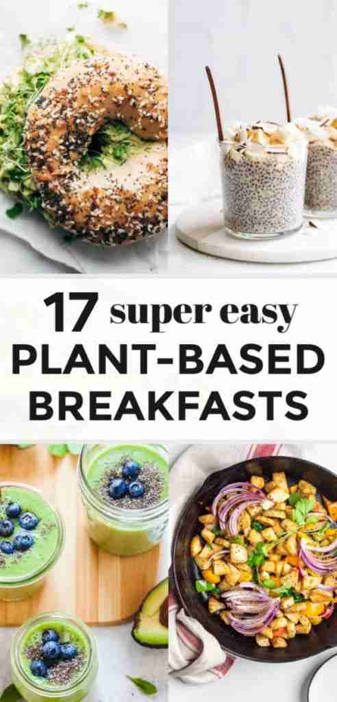 17 Delicious & Easy Plant-Based Breakfast Recipes