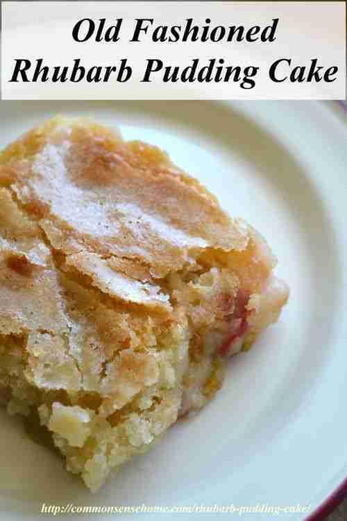 Rhubarb Pudding Cake (Plus 9 More Yummy Rhubarb Recipes)