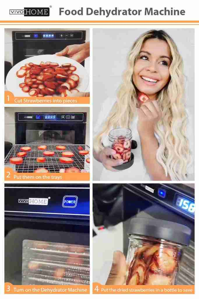 VIVOHOME Electric 600W 6 Trays Commercial Food Dehydrator Machine