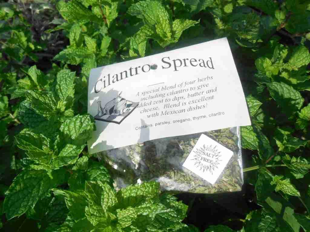 Cilantro Spread Butter / Cream Cheese Spread Mix, Hand-blended Dry salt free Cooking Herb Mix, no salt, gluten free