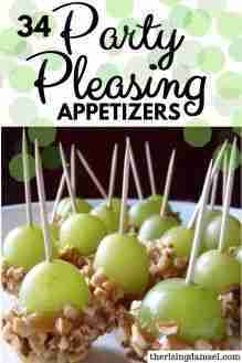 Easy appetizer recipes to please any party guest
