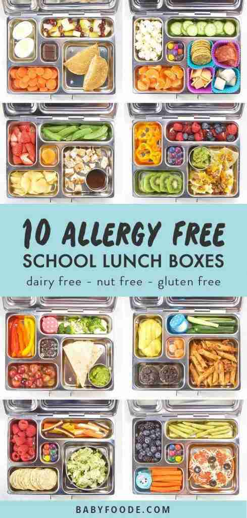 10 Allergy-Free School Lunch Box Ideas for Kids